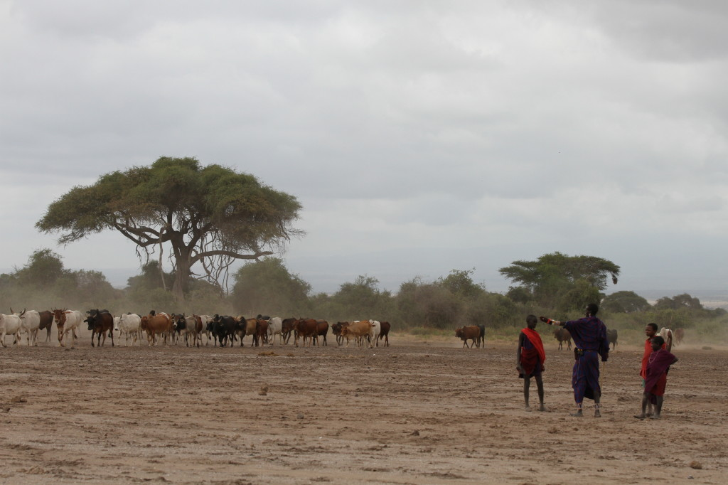 Metito tells young herders that there are lions and hyenas near the water hole they are headed to.